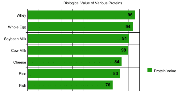 Biological Value of Whey Proteins vs Other Proteins